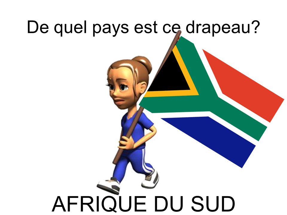 De quel pays est ce drapeau? AFRIQUE DU SUD