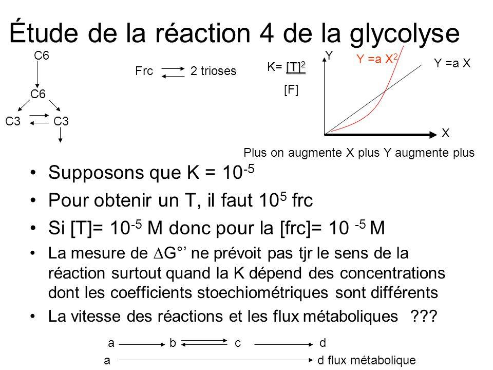Étude de la réaction 4 de la glycolyse •Supposons que K = 10 -5 •Pour obtenir un T, il faut 10 5 frc •Si [T]= 10 -5 M donc pour la [frc]= 10 -5 M •La