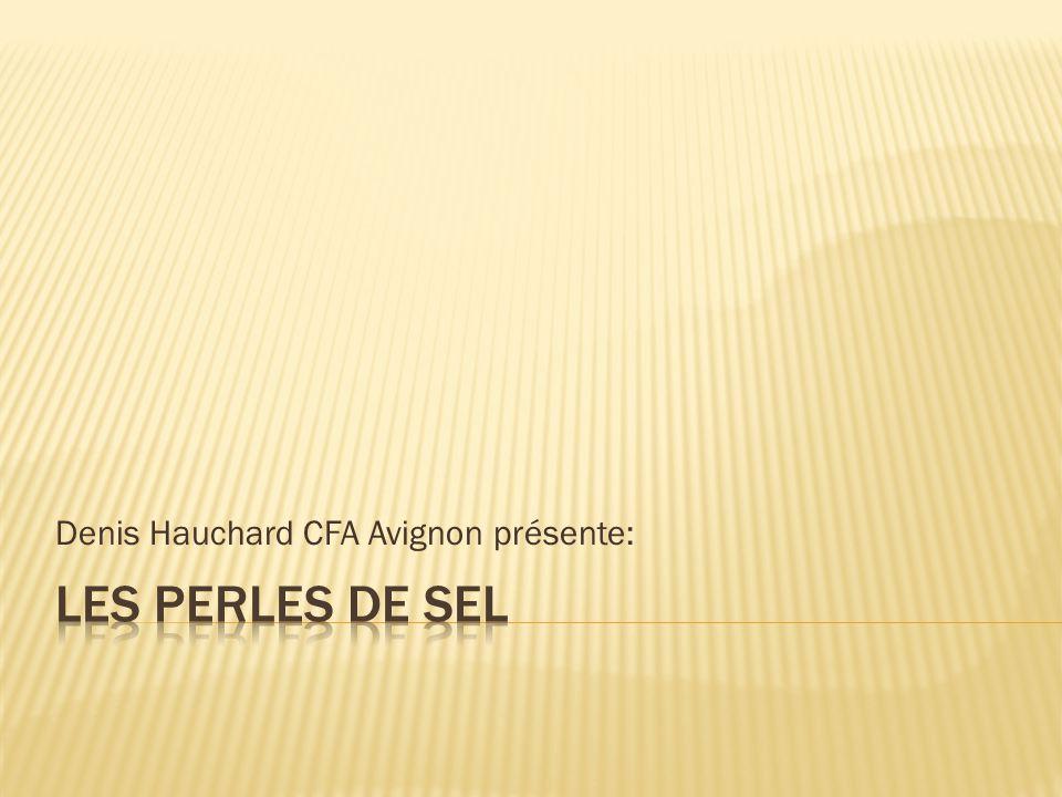 Denis Hauchard CFA Avignon présente: