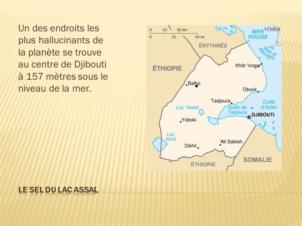 Un des endroits les plus hallucinants de la planète se trouve au centre de Djibouti à 157 mètres sous le niveau de la mer.