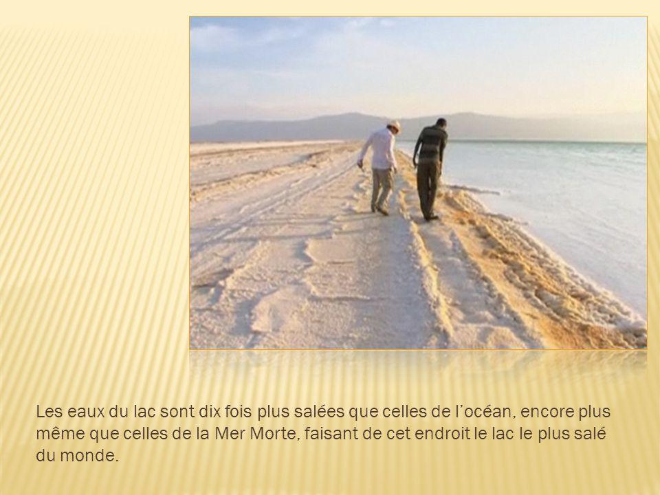 Les eaux du lac sont dix fois plus salées que celles de l'océan, encore plus même que celles de la Mer Morte, faisant de cet endroit le lac le plus salé du monde.