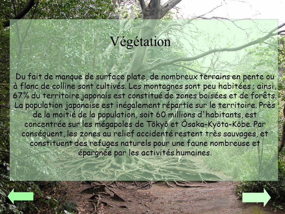 Végétation Du fait de manque de surface plate, de nombreux terrains en pente ou à flanc de colline sont cultivés. Les montagnes sont peu habitées ; ai