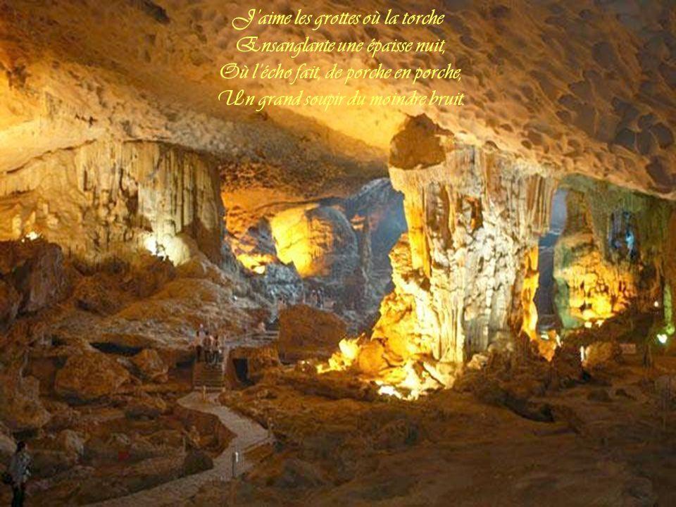 J'aime les grottes où la torche Ensanglante une épaisse nuit, Où l'écho fait, de porche en porche, Un grand soupir du moindre bruit.