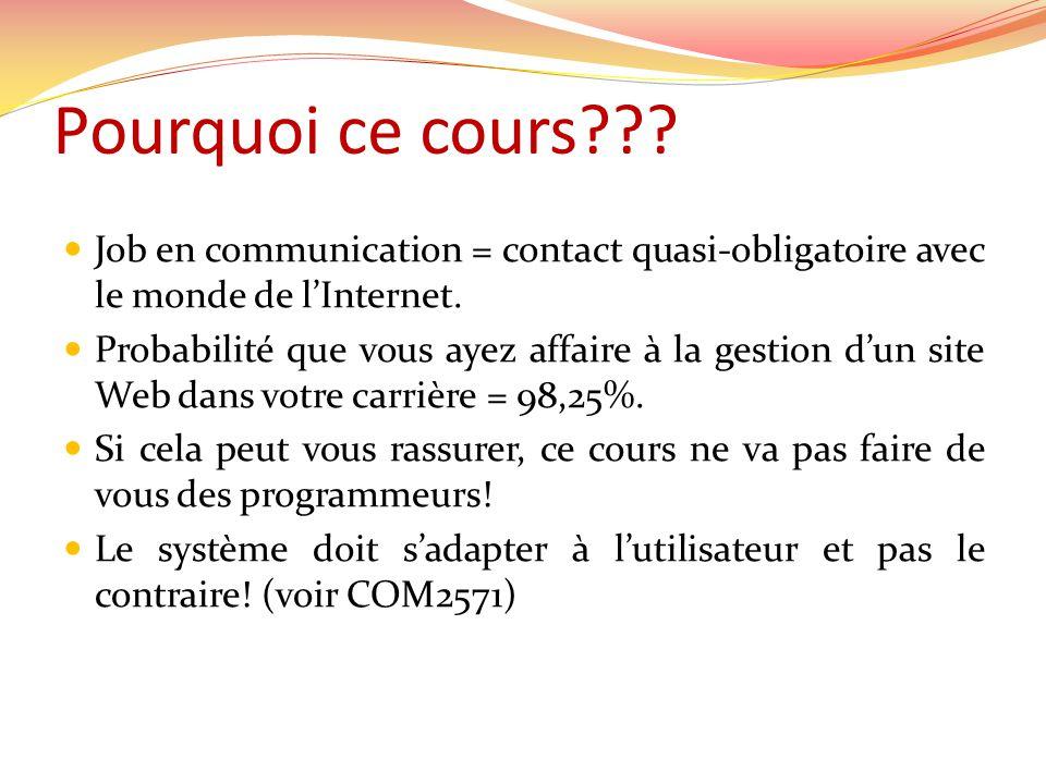  Job en communication = contact quasi-obligatoire avec le monde de l'Internet.  Probabilité que vous ayez affaire à la gestion d'un site Web dans vo