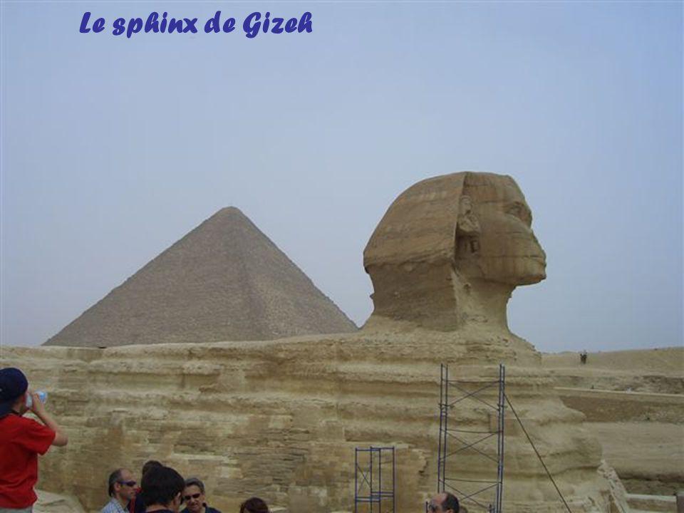 Anubis, le dieu à tête de chacal