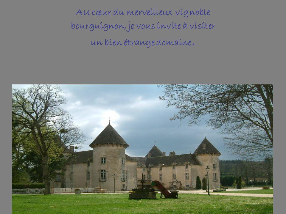 Château de Savigny les Beaune Michel Pont, l'heureux propriétaire ayant conservé l'ensemble des voitures de compétition avec lesquelles il a participé au championnat d'Europe de courses de côte dans les années 80,a aménagé une aile de ce superbe château du 13éme siècle afin d'en faire l'un des plus importants musées à la gloire du sorcier italien CARLO ABARTH