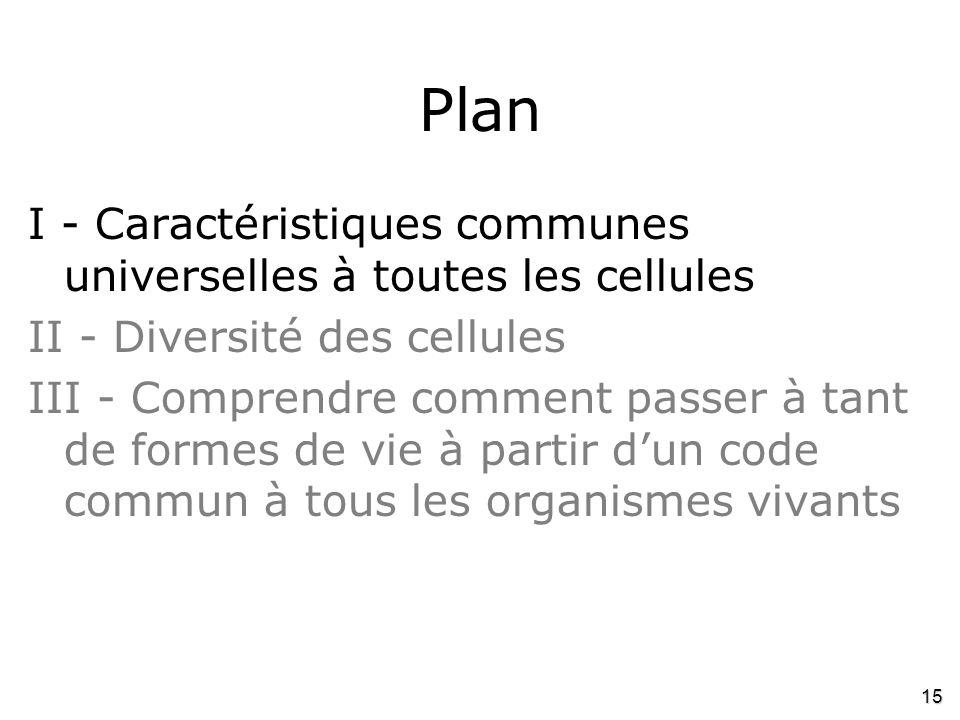15 Plan I - Caractéristiques communes universelles à toutes les cellules II - Diversité des cellules III - Comprendre comment passer à tant de formes