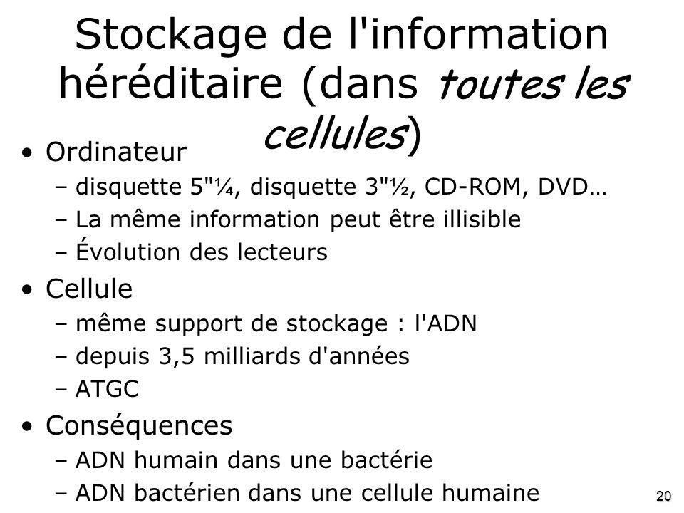 20 Stockage de l'information héréditaire (dans toutes les cellules ) •Ordinateur –disquette 5