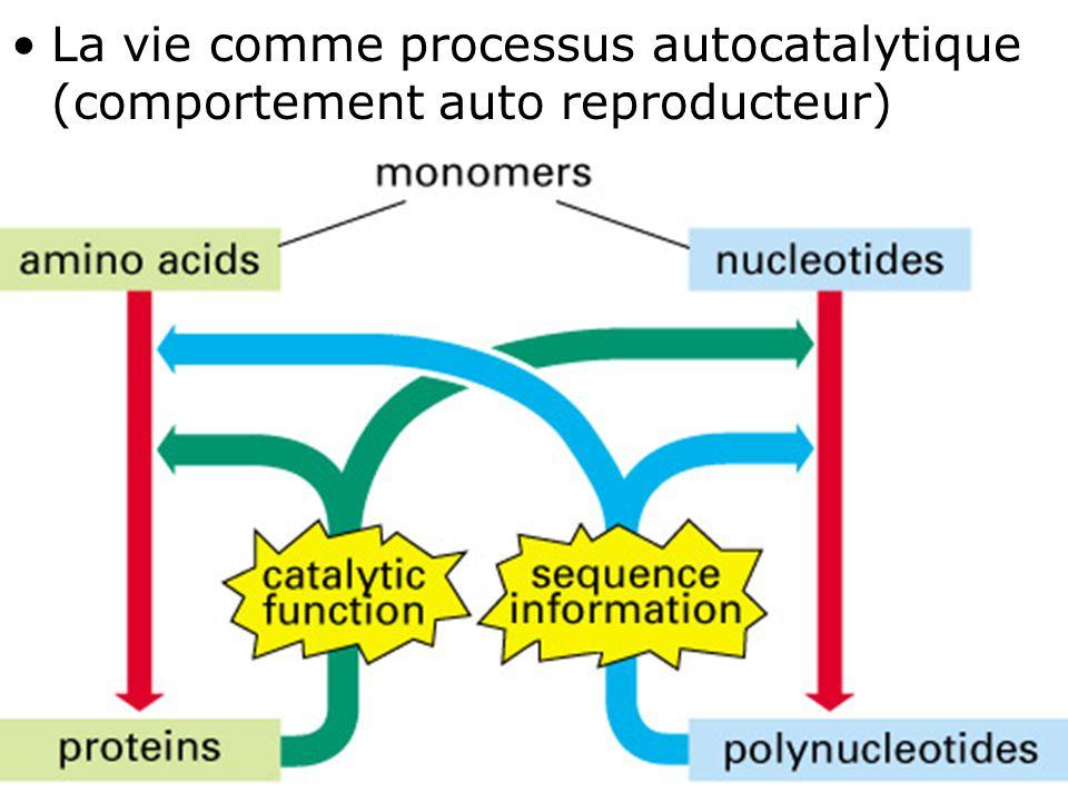 33 Fig 1-8 •La vie comme processus autocatalytique (comportement auto reproducteur)