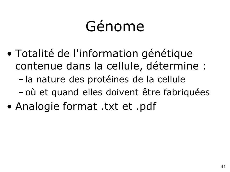 41 Génome •Totalité de l'information génétique contenue dans la cellule, détermine : –la nature des protéines de la cellule –où et quand elles doivent