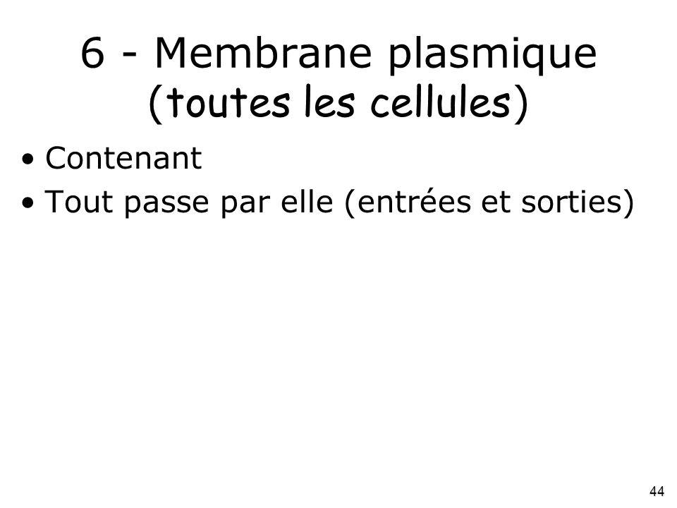 44 6 - Membrane plasmique ( toutes les cellules ) •Contenant •Tout passe par elle (entrées et sorties)
