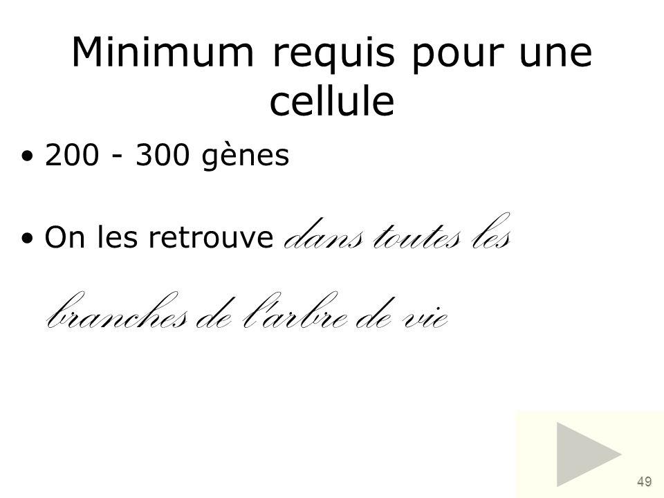 49 Minimum requis pour une cellule •200 - 300 gènes •On les retrouve dans toutes les branches de l'arbre de vie