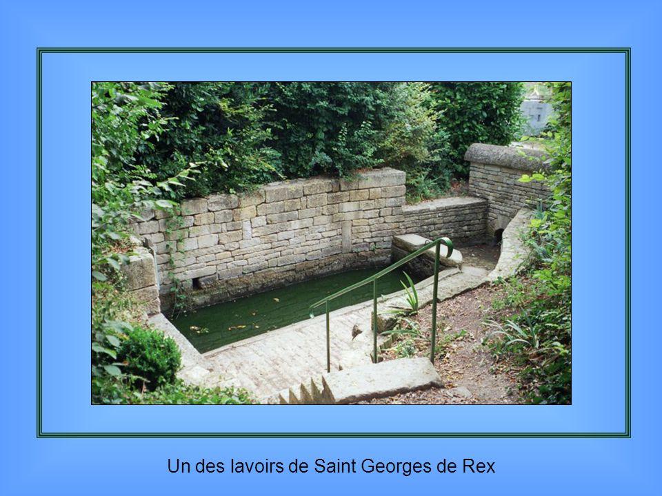 Croix hosannière du XI ème siècle à St Georges de Noisné