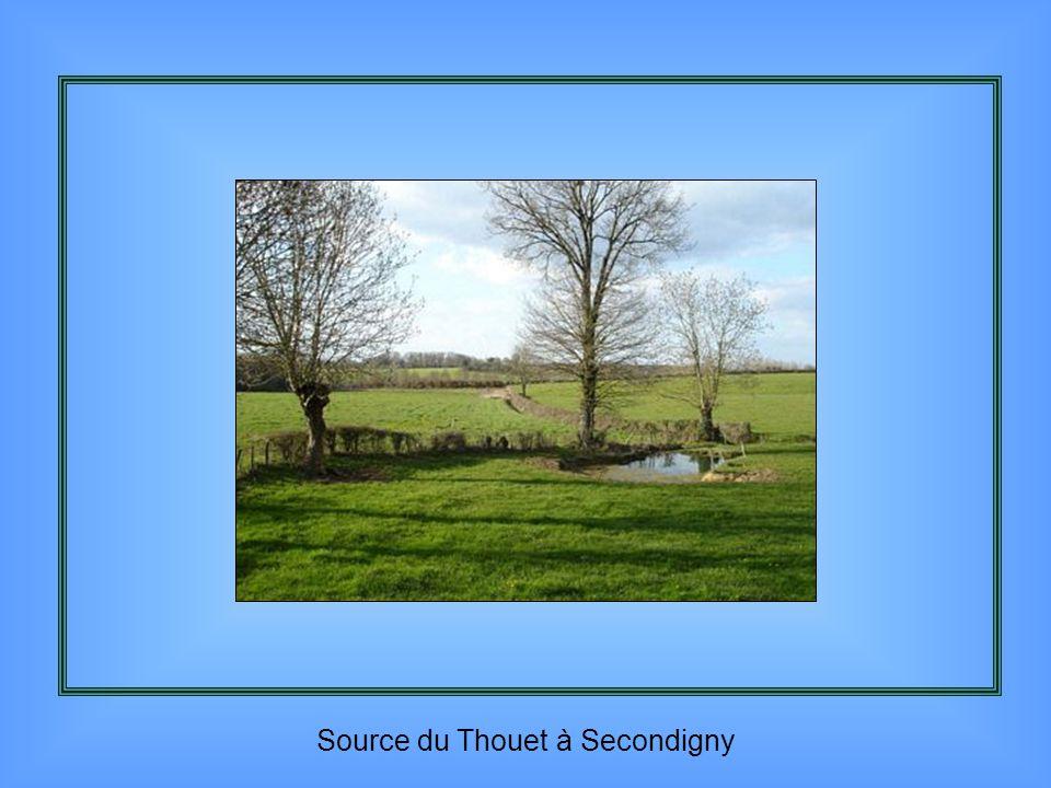 Thouars et le château des Ducs de la Trémoille