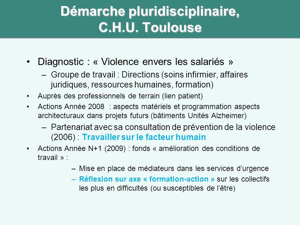 Démarche pluridisciplinaire, C.H.U. Toulouse •Diagnostic : « Violence envers les salariés » –Groupe de travail : Directions (soins infirmier, affaires