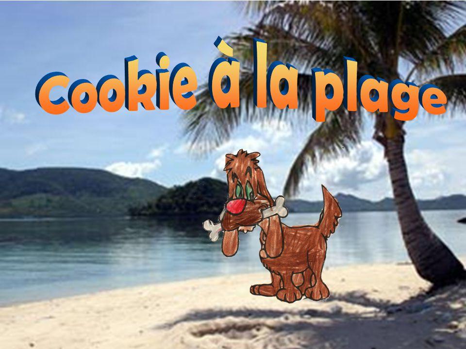 Cookie est un gentil chien qui vit avec la famille Bédard.