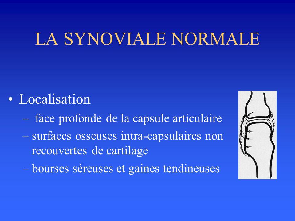 LA SYNOVIALE NORMALE •Fonction –sécrétion du liquide synovial (lubrifiant) –élimination des substances intra-articulaires –glissement des tendons ou de 2 structures adossées (muscles, tendon++)
