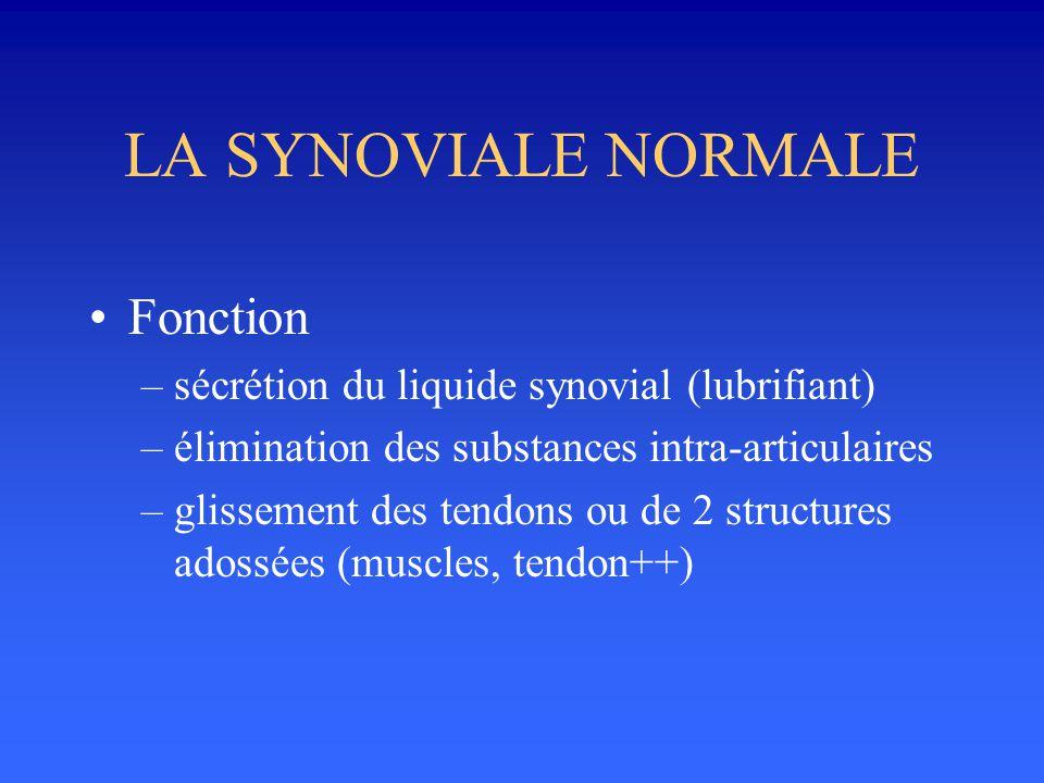 LA SYNOVIALE NORMALE •Fonction –sécrétion du liquide synovial (lubrifiant) –élimination des substances intra-articulaires –glissement des tendons ou d