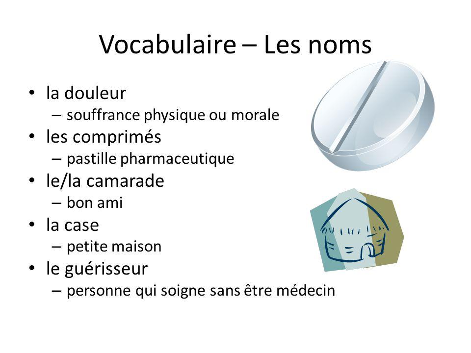 Vocabulaire – Les noms • la douleur – souffrance physique ou morale • les comprimés – pastille pharmaceutique • le/la camarade – bon ami • la case – petite maison • le guérisseur – personne qui soigne sans être médecin