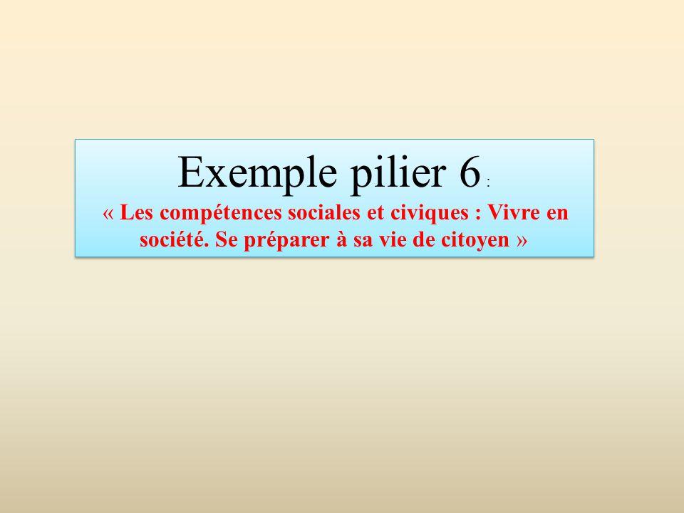 Exemple pilier 6 : « Les compétences sociales et civiques : Vivre en société. Se préparer à sa vie de citoyen » Exemple pilier 6 : « Les compétences s