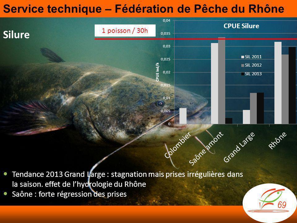 Silure 1 poisson / 30h  Tendance 2013 Grand Large : stagnation mais prises irrégulières dans la saison.