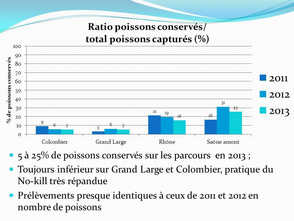  5 à 25% de poissons conservés sur les parcours en 2013 ;  Toujours inférieur sur Grand Large et Colombier, pratique du No-kill très répandue  Prélèvements presque identiques à ceux de 2011 et 2012 en nombre de poissons