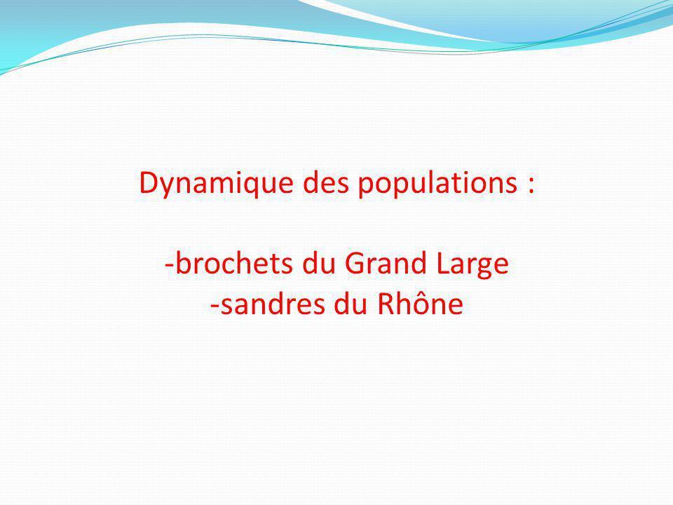 Dynamique des populations : -brochets du Grand Large -sandres du Rhône