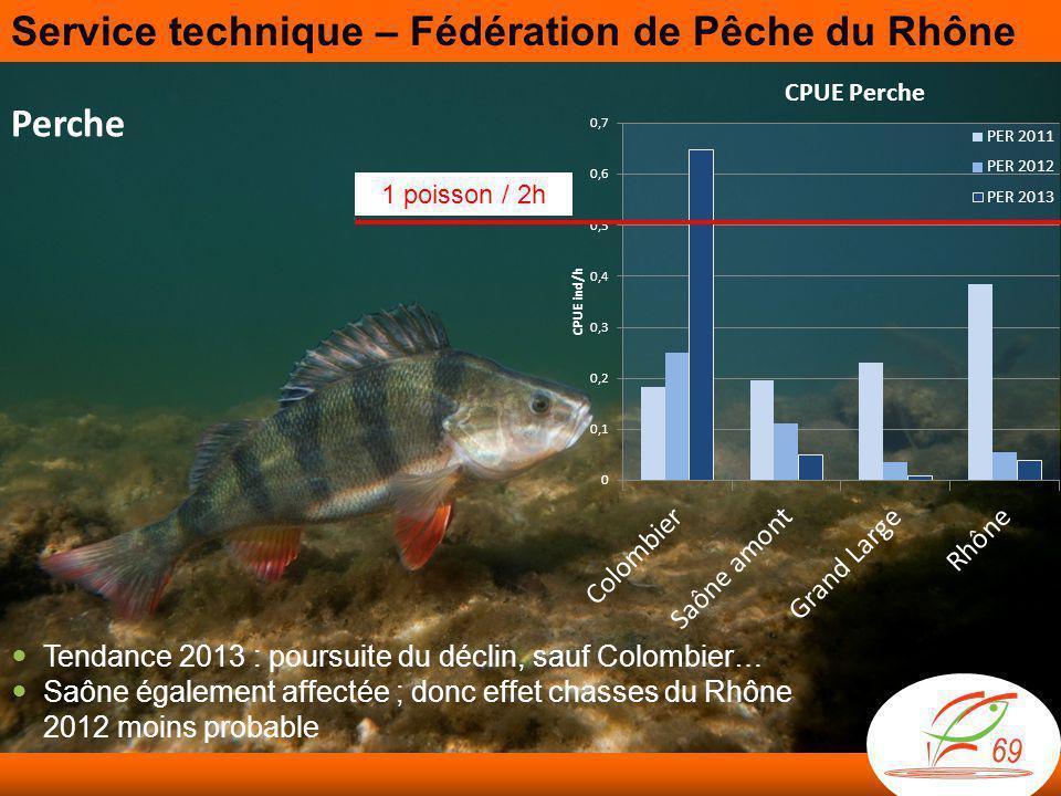 Perche 1 poisson / 2h  Tendance 2013 : poursuite du déclin, sauf Colombier…  Saône également affectée ; donc effet chasses du Rhône 2012 moins probable Service technique – Fédération de Pêche du Rhône