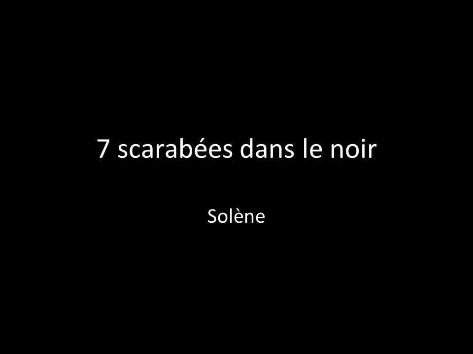 7 scarabées dans le noir Solène