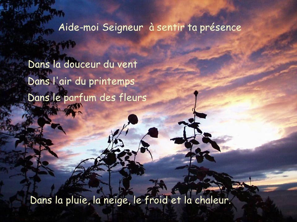 Aide-moi Seigneur à sentir ta présence Dans la douceur du vent Dans l air du printemps Dans la pluie, la neige, le froid et la chaleur.