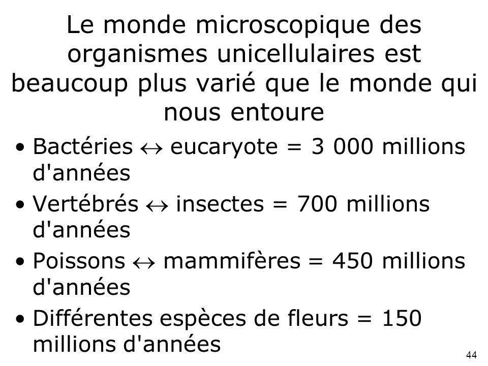 44 Le monde microscopique des organismes unicellulaires est beaucoup plus varié que le monde qui nous entoure •Bactéries  eucaryote = 3 000 millions