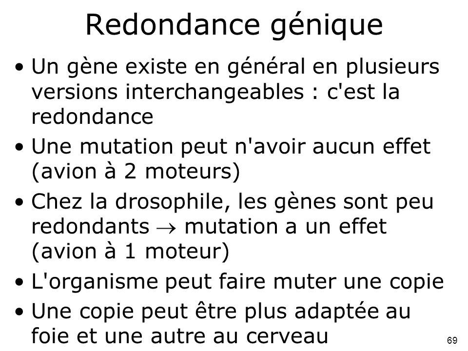 69 Redondance génique •Un gène existe en général en plusieurs versions interchangeables : c'est la redondance •Une mutation peut n'avoir aucun effet (