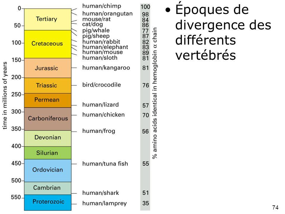 74 Fig 1-52 •Époques de divergence des différents vertébrés