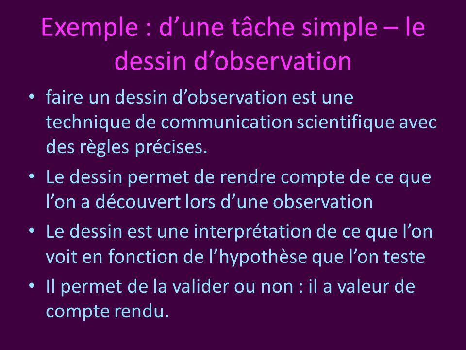 Exemple : d'une tâche simple – le dessin d'observation • faire un dessin d'observation est une technique de communication scientifique avec des règles précises.