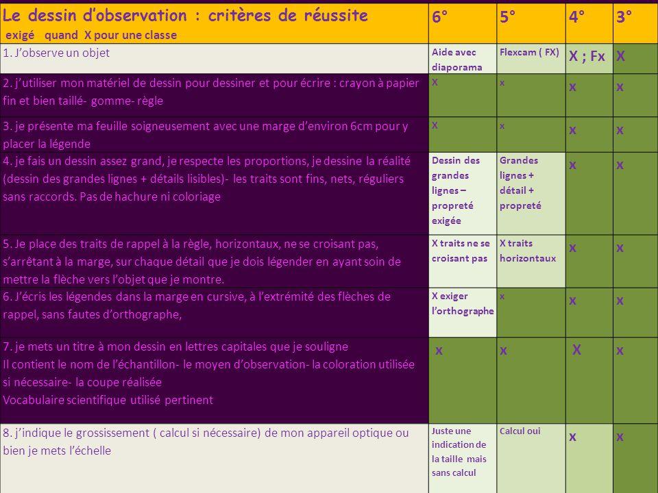 Le dessin d'observation : critères de réussite exigé quand X pour une classe 6°5°4°3° 1.