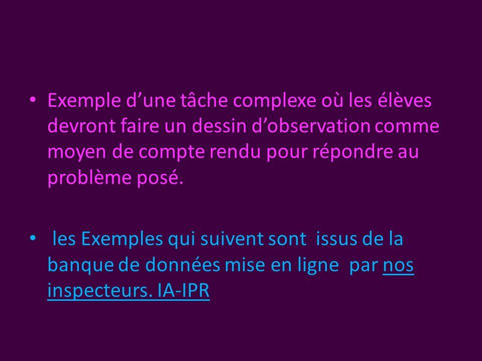 • Exemple d'une tâche complexe où les élèves devront faire un dessin d'observation comme moyen de compte rendu pour répondre au problème posé.