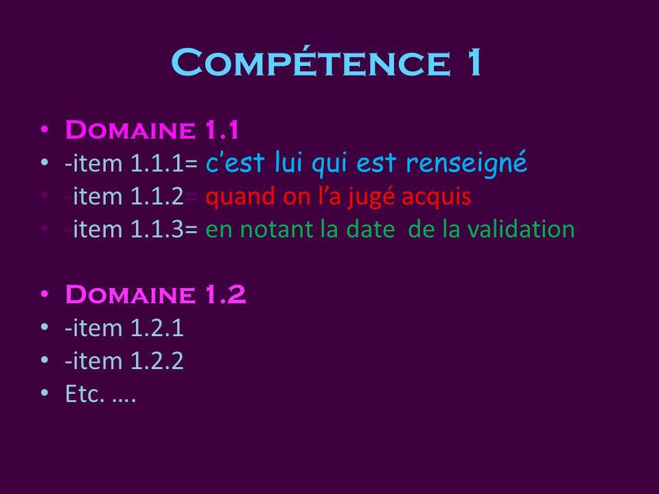 Compétence 1 • Domaine 1.1 • -item 1.1.1= c'est lui qui est renseigné • -item 1.1.2= quand on l'a jugé acquis • -item 1.1.3= en notant la date de la validation • Domaine 1.2 • -item 1.2.1 • -item 1.2.2 • Etc.