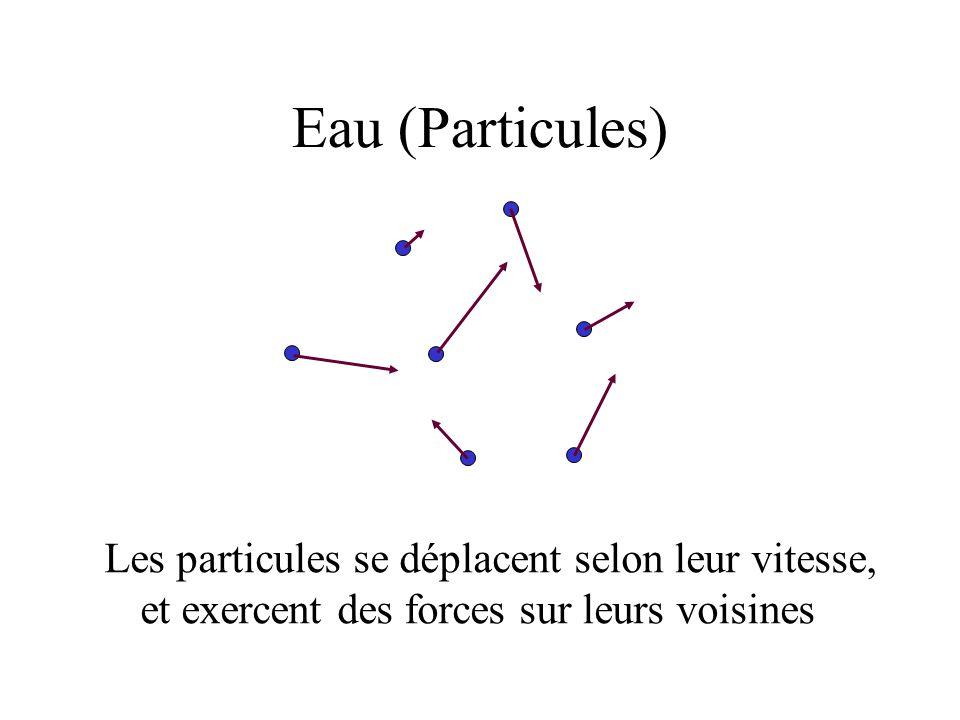 Eau (Particules) Les particules se déplacent selon leur vitesse, et exercent des forces sur leurs voisines