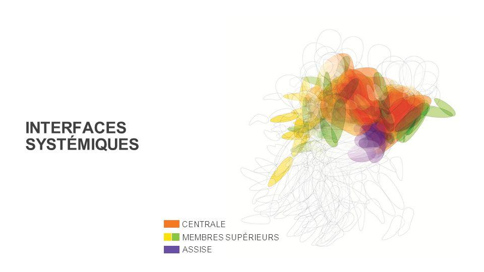 INTERFACES SYSTÉMIQUES CENTRALE MEMBRES SUPÉRIEURS ASSISE