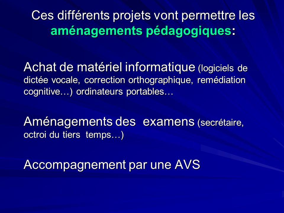 Ces différents projets vont permettre les aménagements pédagogiques: Achat de matériel informatique (logiciels de dictée vocale, correction orthograph