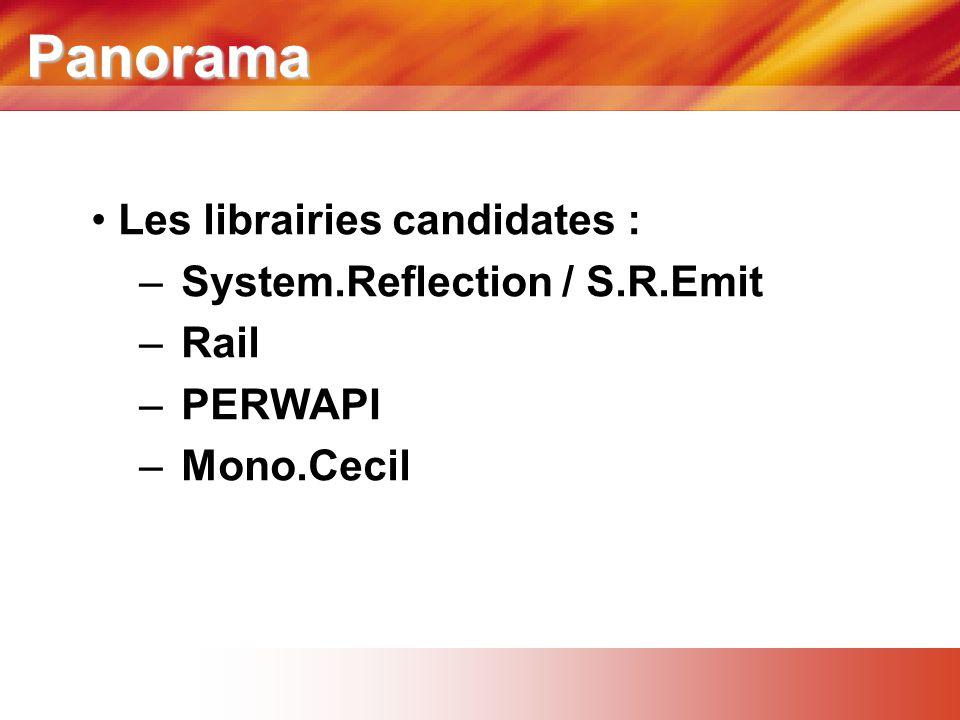 Panorama • Les librairies candidates : – System.Reflection / S.R.Emit – Rail – PERWAPI – Mono.Cecil