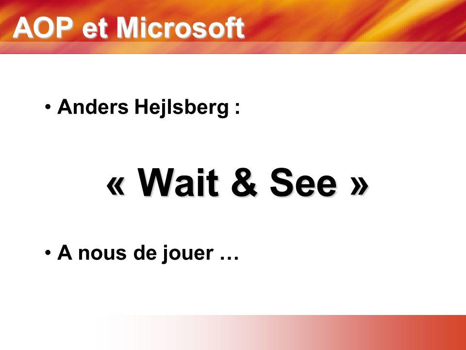 AOP et Microsoft • Anders Hejlsberg : « Wait & See » • A nous de jouer …