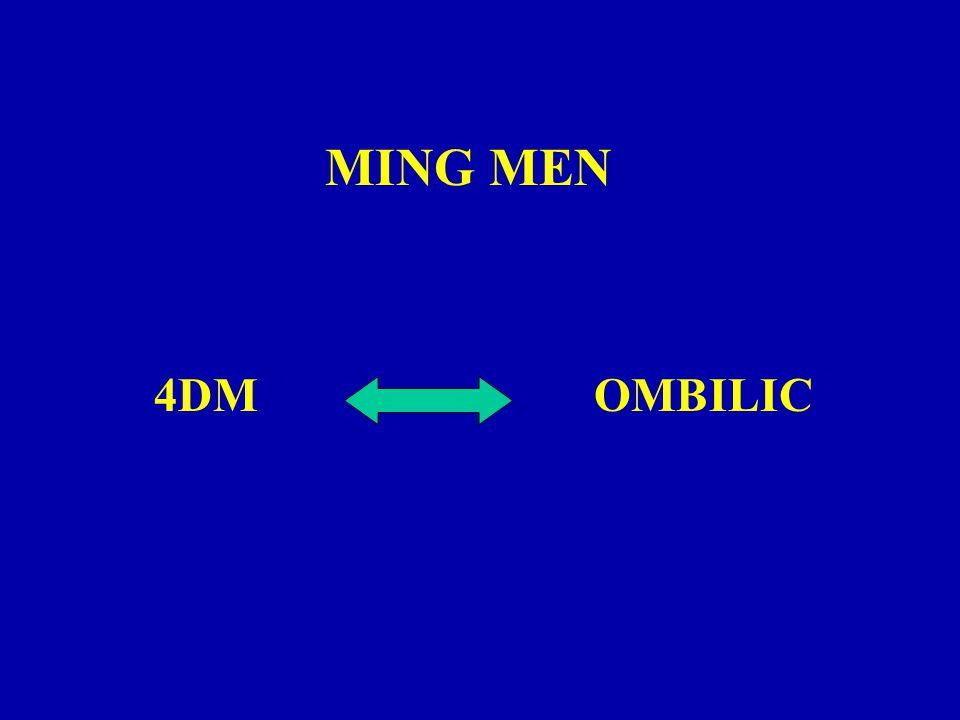MING MEN 4DMOMBILIC