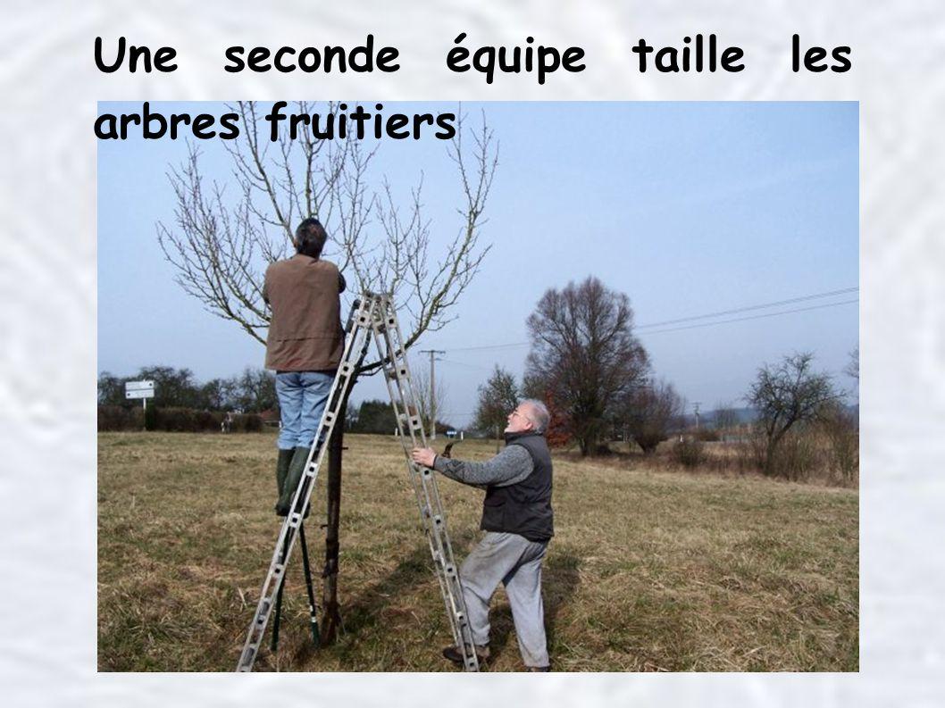 Une seconde équipe taille les arbres fruitiers