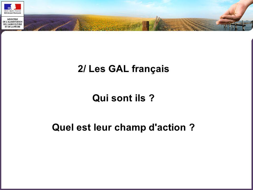 2/ Les GAL français Qui sont ils Quel est leur champ d action