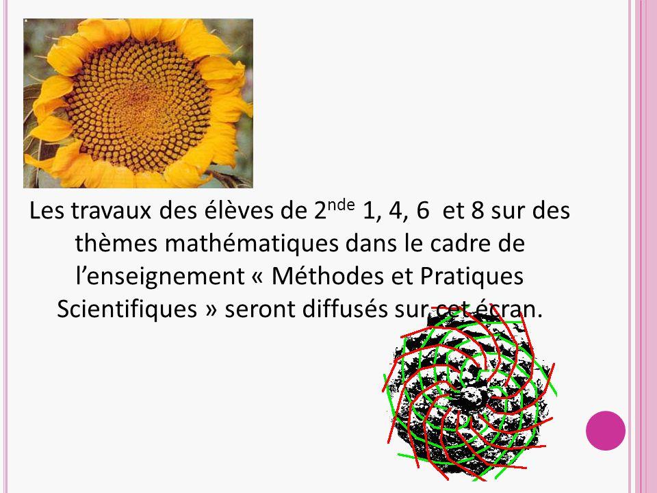 Les travaux des élèves de 2 nde 1, 4, 6 et 8 sur des thèmes mathématiques dans le cadre de l'enseignement « Méthodes et Pratiques Scientifiques » seront diffusés sur cet écran.
