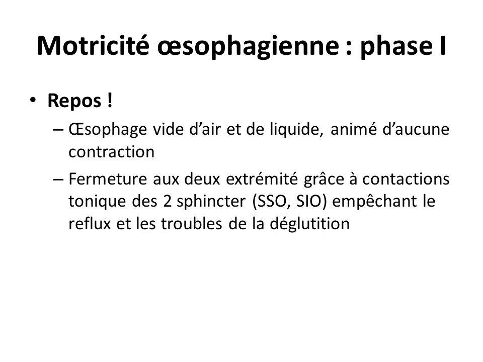 Motricité œsophagienne : phase I • Repos ! – Œsophage vide d'air et de liquide, animé d'aucune contraction – Fermeture aux deux extrémité grâce à cont