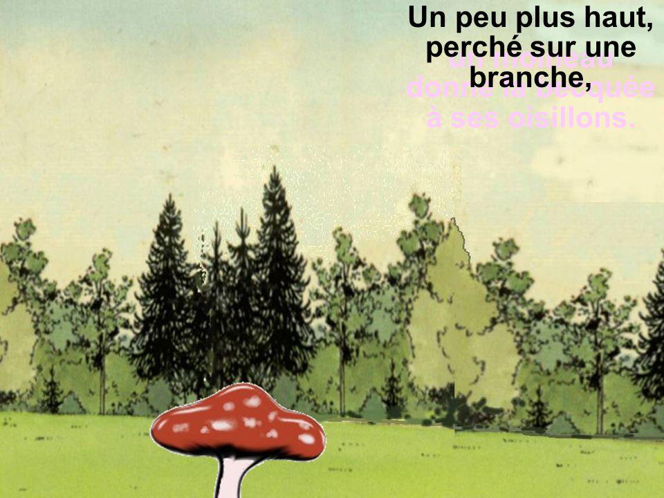 En poursuivant son chemin, Léontine ralentit pour admirer une libellule virevoltant au-dessus d'un champignon