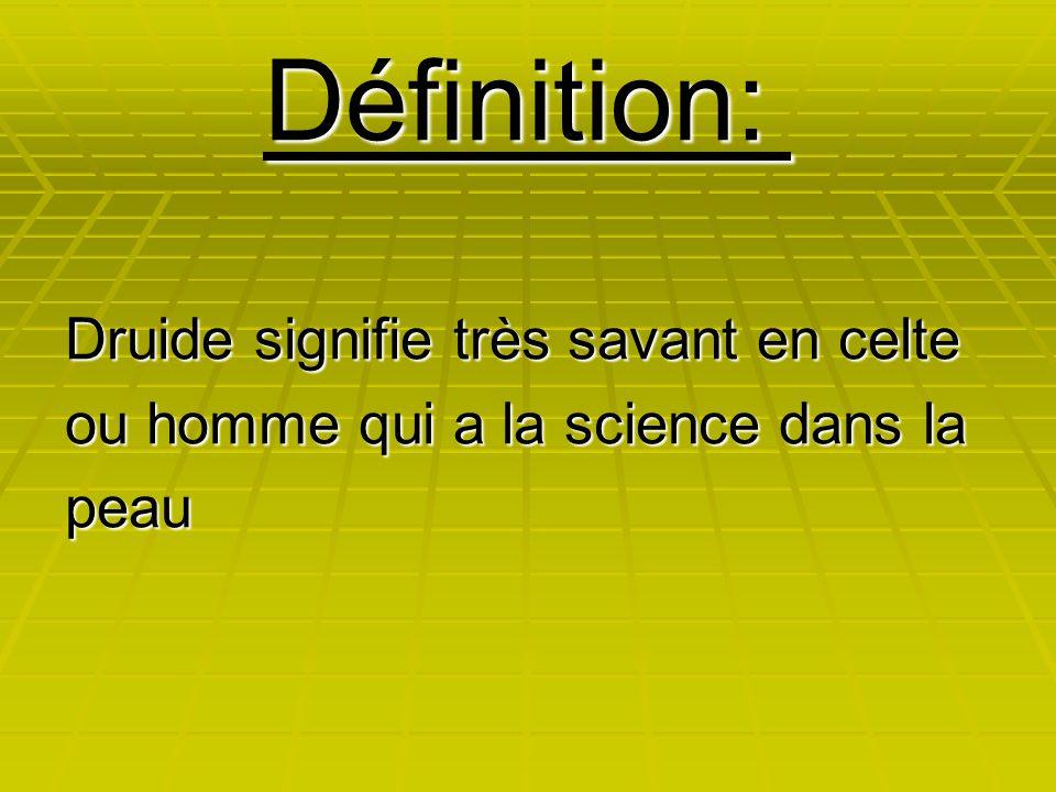 Définition: Druide signifie très savant en celte ou homme qui a la science dans la peau