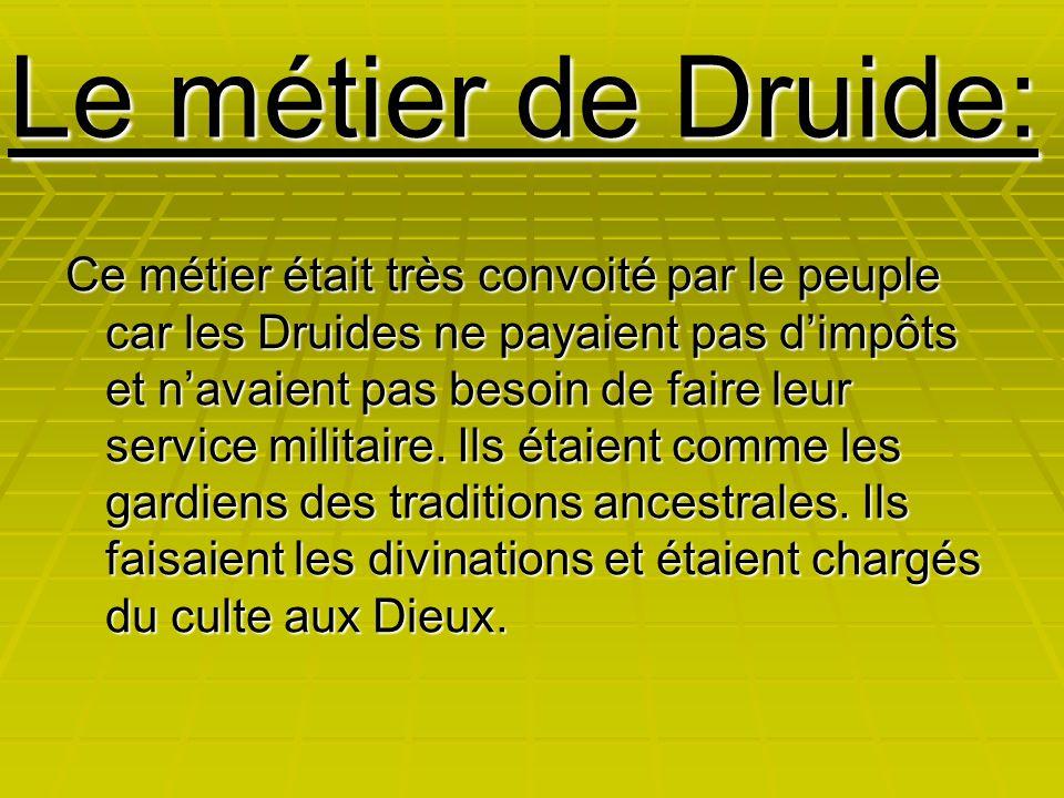Le métier de Druide: Ce métier était très convoité par le peuple car les Druides ne payaient pas d'impôts et n'avaient pas besoin de faire leur servic